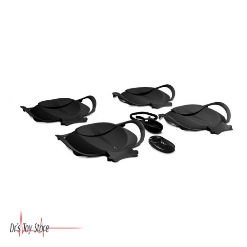 Wireless-Wheelchair-Scale-D300-Series